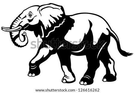 free african elephant vector - download free vector art, stock