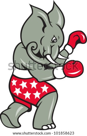 Elephant Boxer Boxing Stance Cartoon illustration of an elephant boxer with boxing gloves and stars shorts as republican mascot.