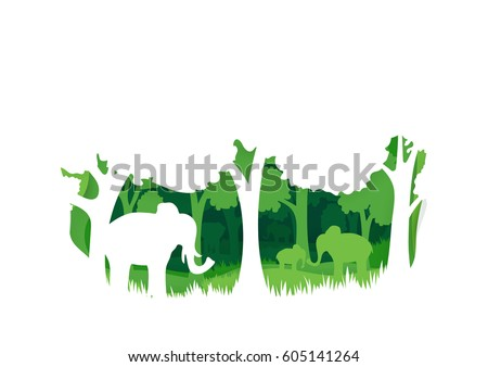 elephant in the forest