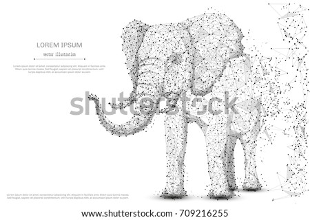 Stock Photo Elephant isolated from low poly wireframe on white background. African and indian animal. Vector abstract polygonal image mash line and point hands collect puzzle with an inscription. Digital graphics