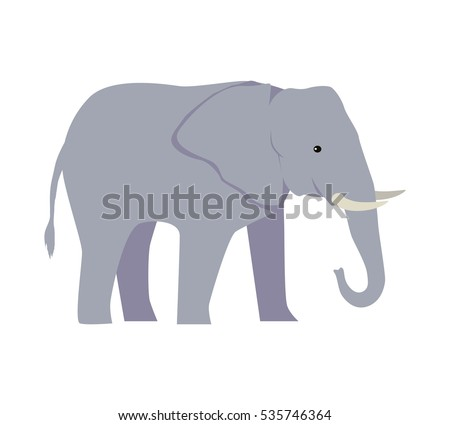 Elephant large cartoon mammal isolated on white. African bush or forest elephant and Asian elephant. Has large ears, concave back, wrinkled skin, sloping abdomen. Sticker for children. Vector