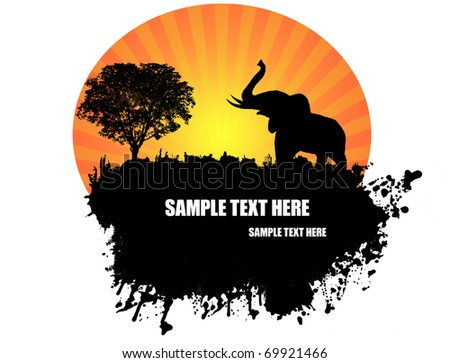 Elephant silhouette on grunge background. vector illustration