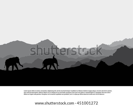 elephant  silhouettes in wild