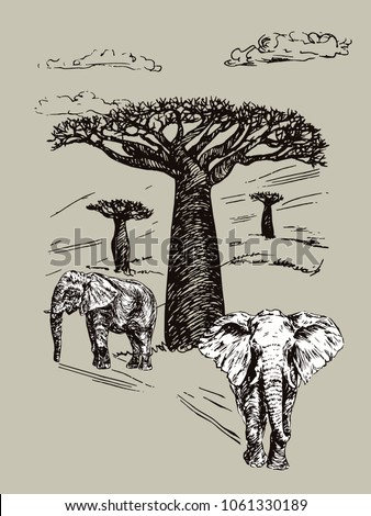Elephants couple standing, African landscape with baobabs, hand drawn doodle, sketch in pop art style, vector black and white illustration? on gray background