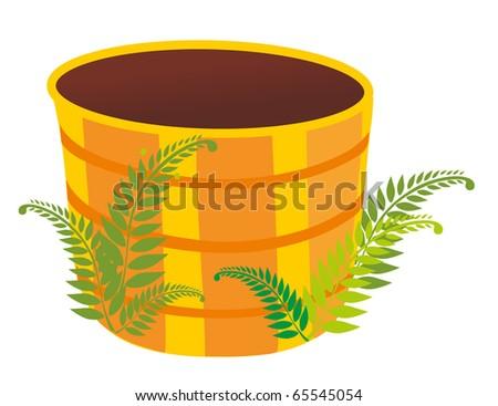 empty tub and bush of the fern