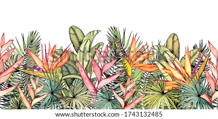 Endless horizontal border with tropical palm leaves, heliconia and strelitzia flowers. Paradise Bird flowers.
