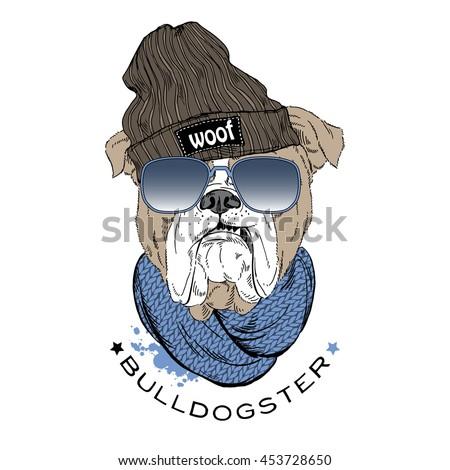 english bulldog hipster