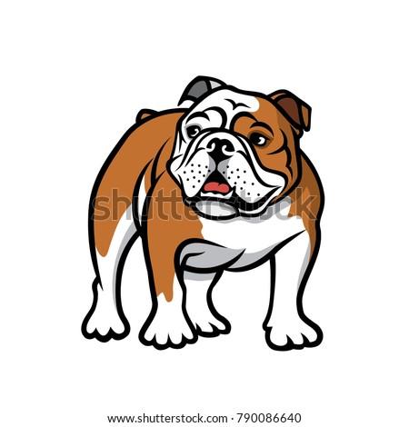 English bulldog - isolated vector illustration Stock photo ©