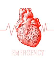 Engraving red human heart illustration on white background with heart rate pulse graph and emergency