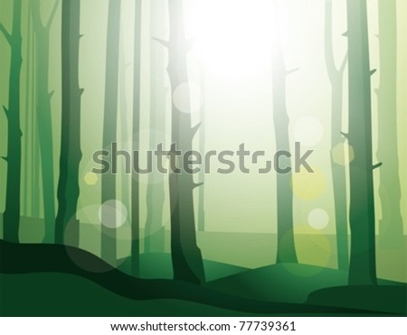enigmatic  forest eps10