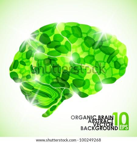 eps10, human organic brain, vector abstract background - stock vector