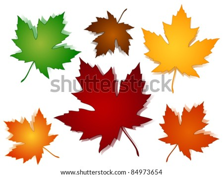 EPS 10:Maple leaves in a variety of autumn or fall colors with shadows