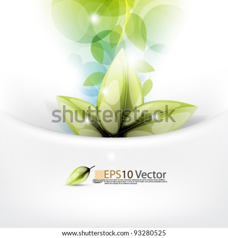 eps10 vector abstract leaf concept design