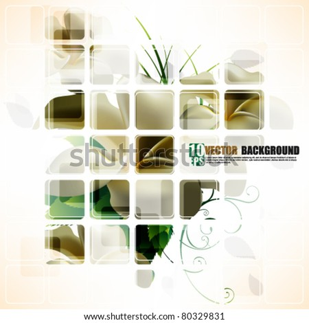 eps10 vector elegant flower background design