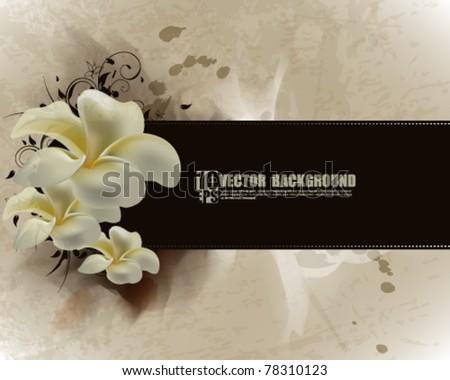 eps10 vector flower inspired vintage background - stock vector