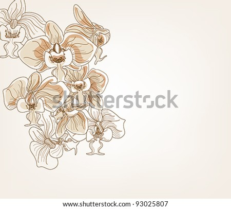 Eps 10 vector - hand drawn orchid postcards - layers separated - easily editable