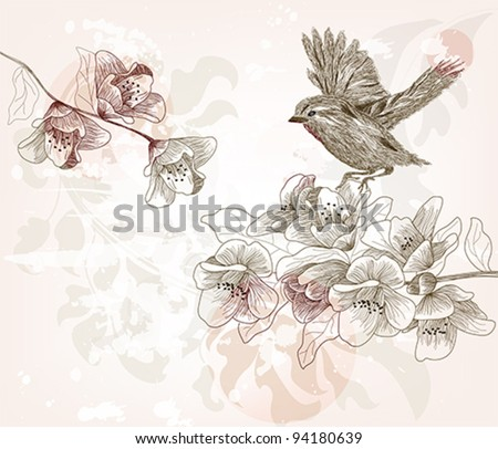 Eps 10 vector - hand drawn spring scene - layers separated -easily editable