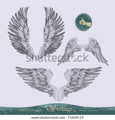 EPS10,  wings vector set for decoration and design