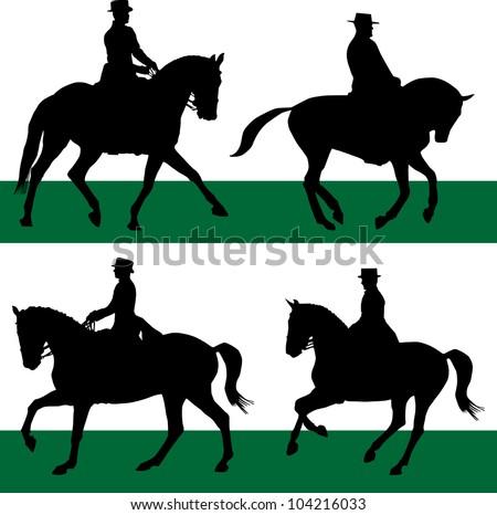 equestrian sport of dressage horses