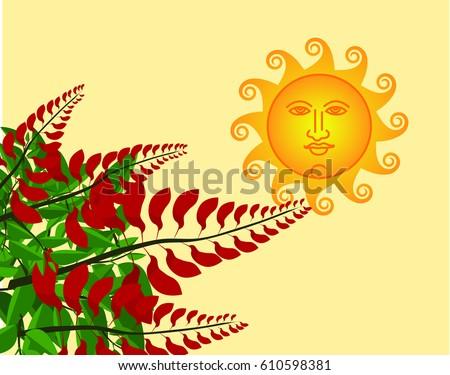 erythrina variegata flowers and