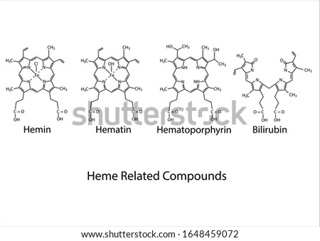 Erythropoietic Effect of Red Blood Cell Components and Heme-Related Compounds