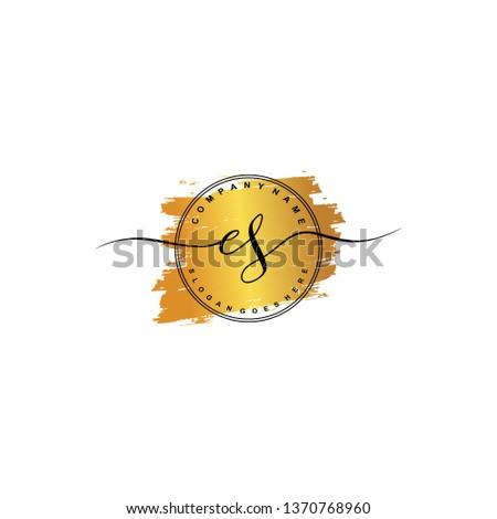ES Initial luxury handwriting logo vector Photo stock ©