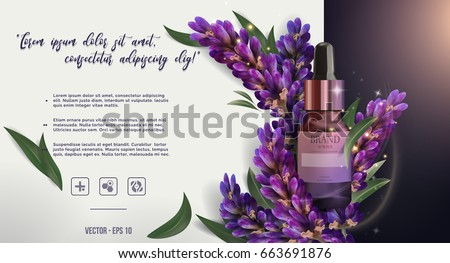 Essential oil ads: glass bottle, purple lavender and salvia with leaves, cosmetic product skincare banner.