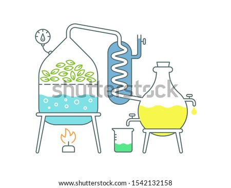 Essential oil making. Distillations aromatic oils production Perfumery substances Distiller equipment.