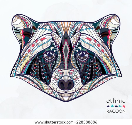 ethnic raccoon   african