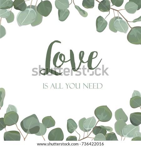 eucalyptus silver dollar green