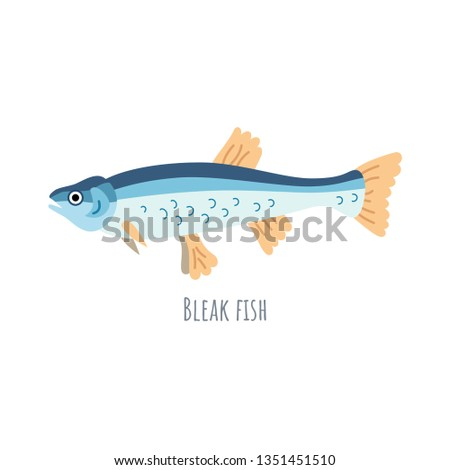 European Freshwater fish - Bleak fish. Cartoon character fish Common Bleak isolated on white background.