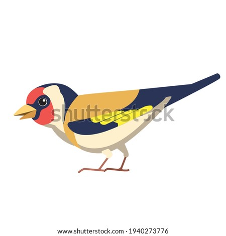 European goldfinch is a small passerine bird in the finch family. British Finches Bird cartoon flat style beautiful character of ornithology, vector illustration isolated on white background. Stock photo ©