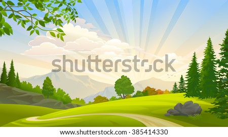 evergreen forest and green