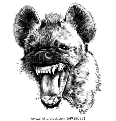 evil hyena face black and white sketch vector