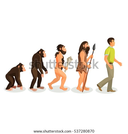 Evolution ape to man process isolated.