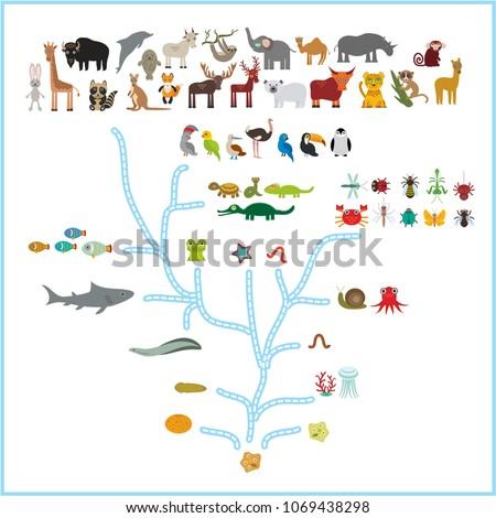 evolution in biology  scheme...