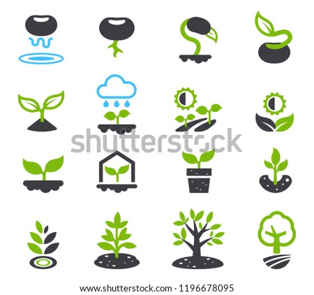 Evolution of seeds to a big trees(icon concept). Environment that affect a growth of plant.