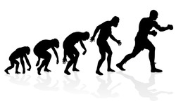 Evolution of the Heavyweight Boxer. Great illustration of depicting the evolution of a male from ape to man to Heavyweight Boxer in silhouette.
