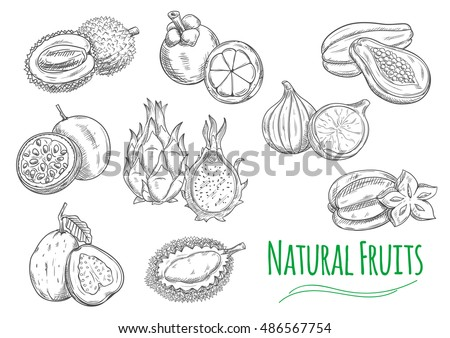 exotic and tropical fruits