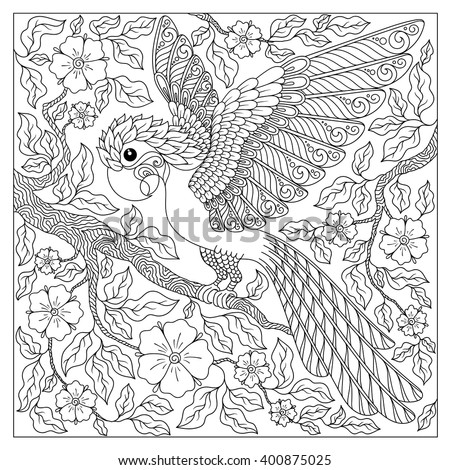 Exotic bird,fantastic flowers,branches, leaves.Contour thin line drawing.Vector fantasy stylized cockatoo jungle parrot silhouette.T-shirt print.Coloring book page for adults and children.Black White