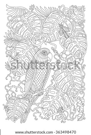 Exotic bird, fantastic tropical branch, foliage, insects.Contour thin line.Black and white.Vector fantasy stylized jungle parrot silhouette on the liana leaves.T-shirt print. Coloring book page