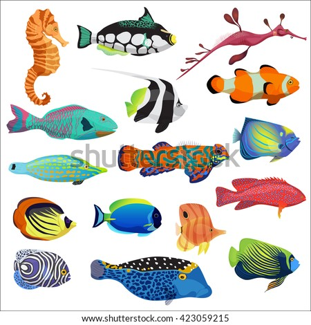 Shutterstock Exotic cartoon colorful tropical fish collection. Marine animals set.