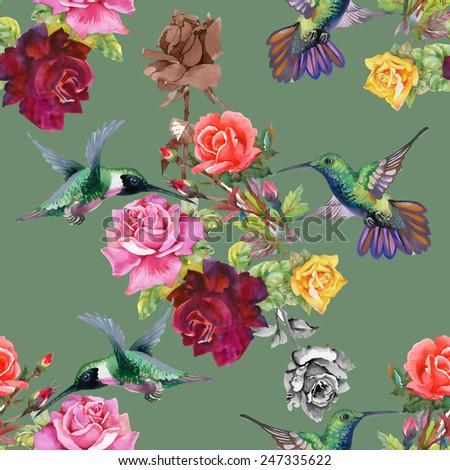 exotic colibri birds with rose