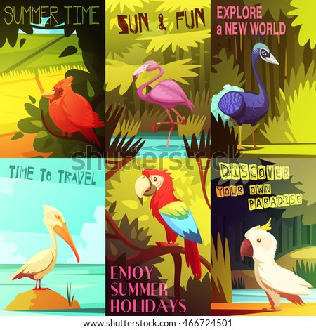 exotic colorful birds 6 posters