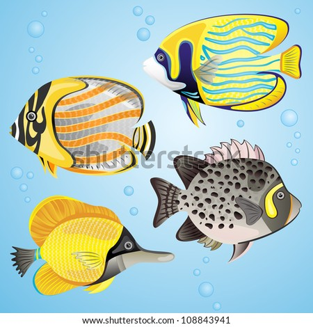 Exotic fish set on blue background. EPS 10 vector illustration. Each element is isolated on a separate layer