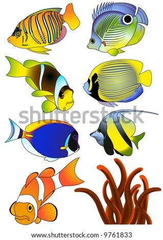 Exotic fish, vector illustartion, EPS file included