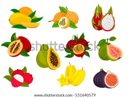 Exotic fruit isolated icon set with tropical mango, papaya, carambola, passion fruit, lychee, dragon fruit, fig, guava, tamarillo. Food and juice packaging design