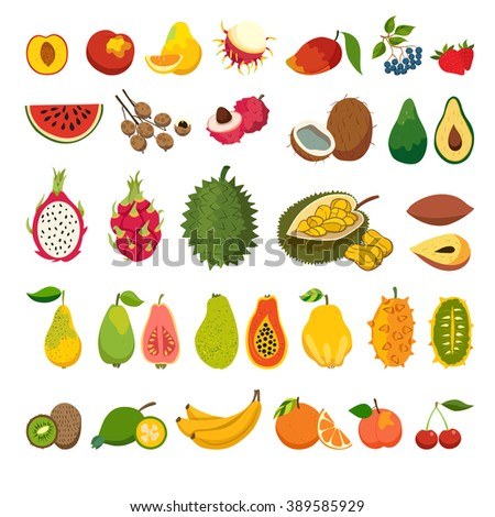 Exotic fruits vector set. Juicy and ripe fruit: papaya, guava, mango cartoon. Natural organic. Isolated vector illustration on white background