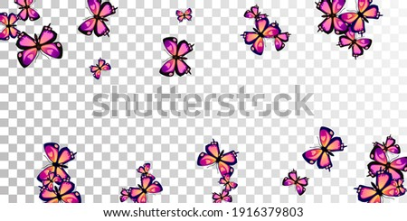 exotic purple butterflies