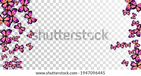 exotic purple butterflies